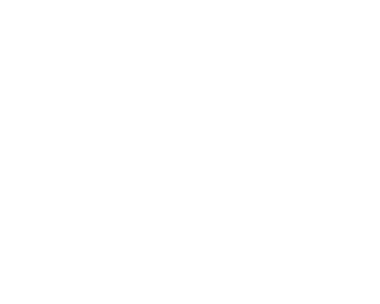 FlorisVK
